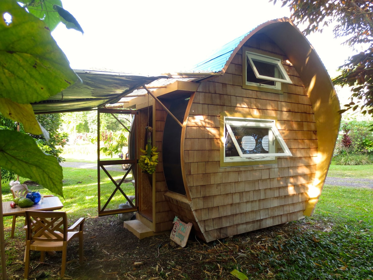 Eco-Retreat: DolphinPod Glamping