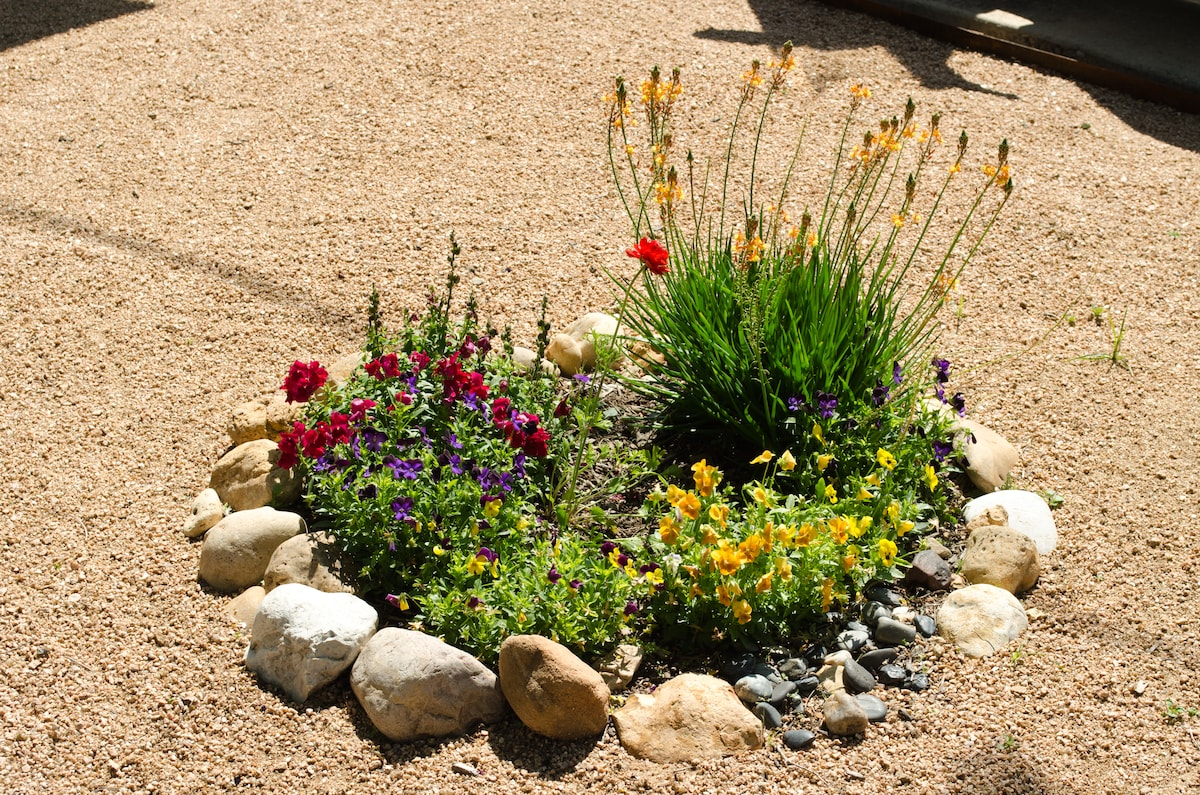Floral display in front yard