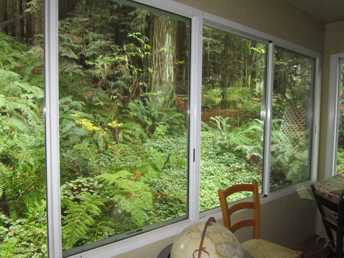 2 bdrm - Redwoods, River & Ocean