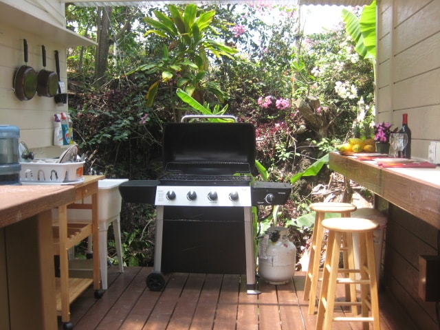 Garden outdoor cooking/ dining area..