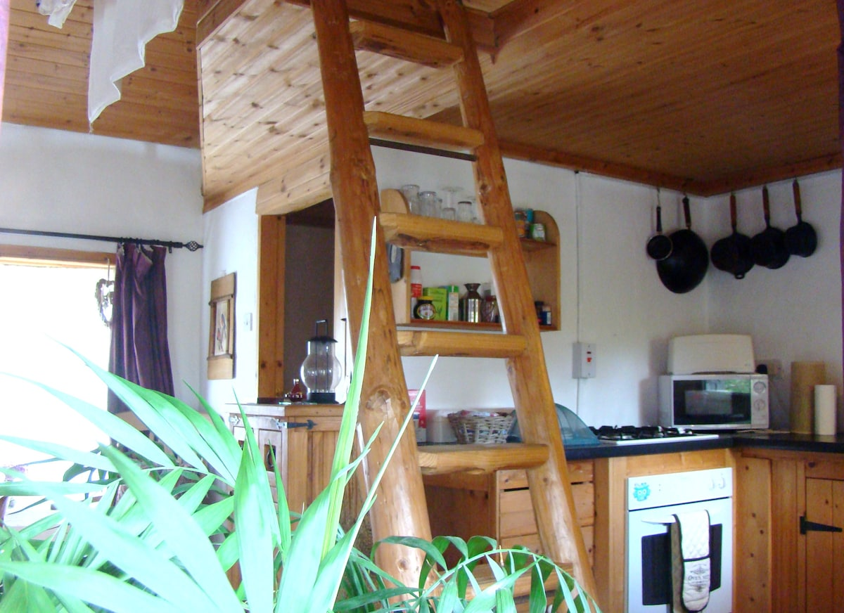 View of kitchen and rustic steps to loft bedroom