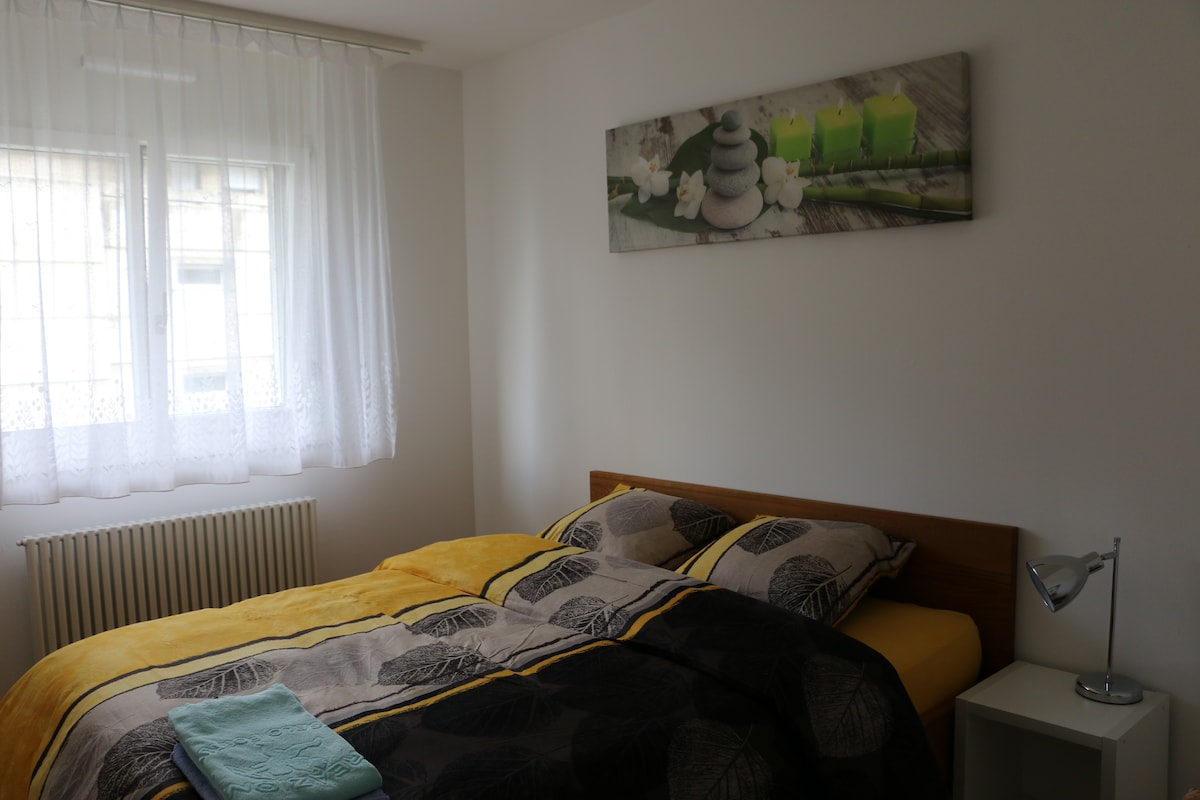 Cozy appartment near city center