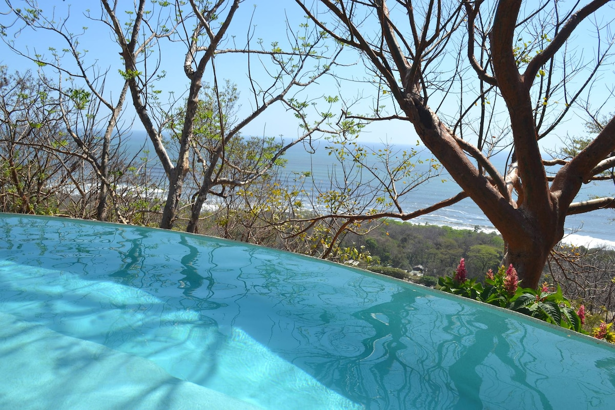 Our beautiful infinity pool right outside your villa