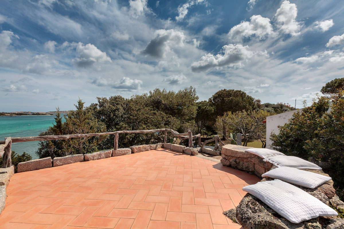 The roof terrace overlooking the bay