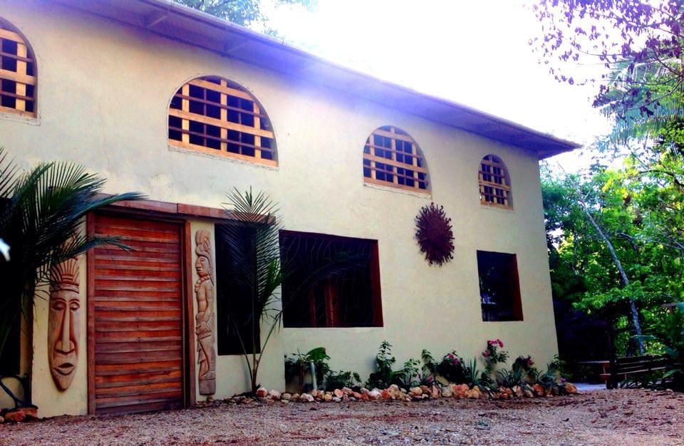 Cocao Rainforest Lodge, Hummingbird