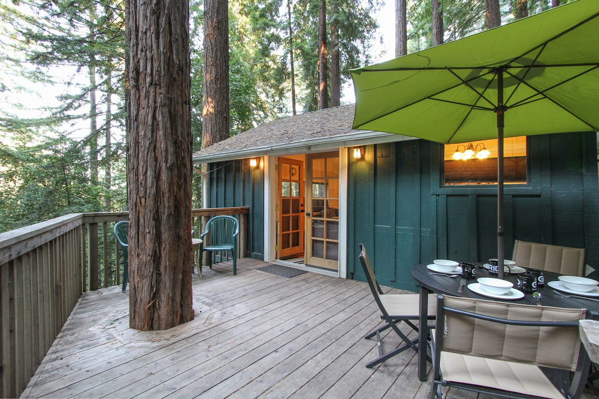 Cozy Cabin in the Redwoods