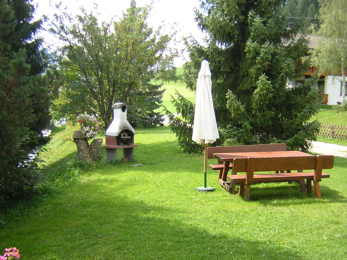 Garden of the house with barbecue.