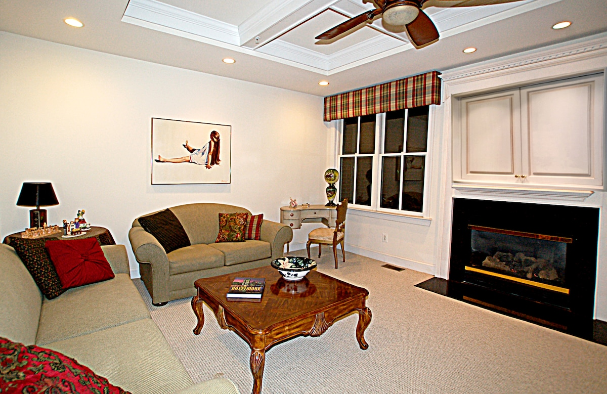 Cozy, second floor den with fireplace and WiFi