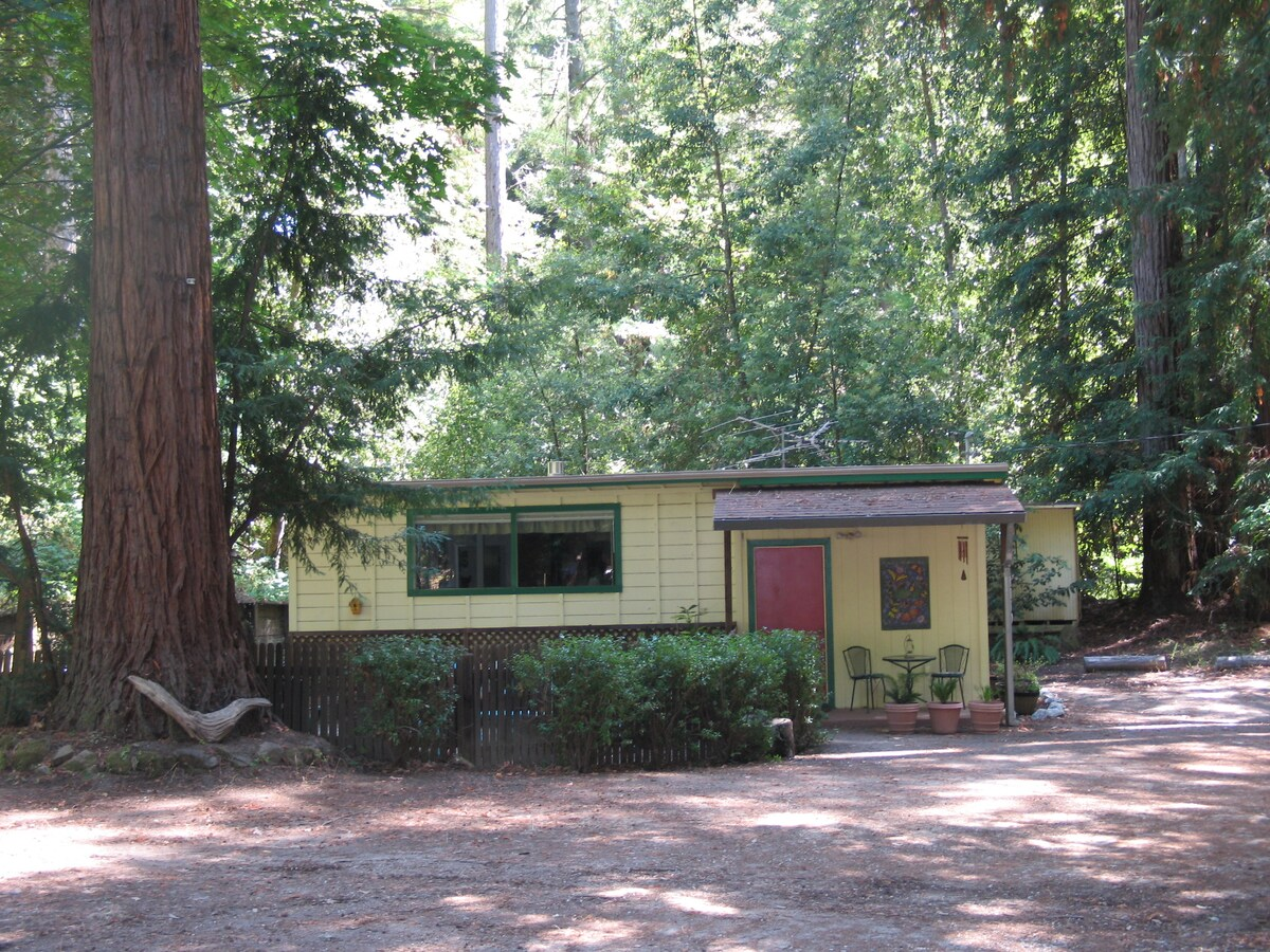 The Butterfly House in the Redwoods