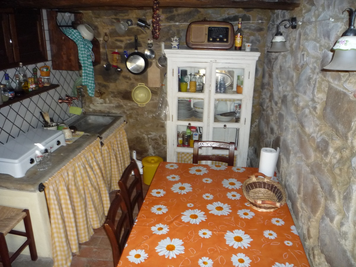 Holiday apartment in MAREMMA