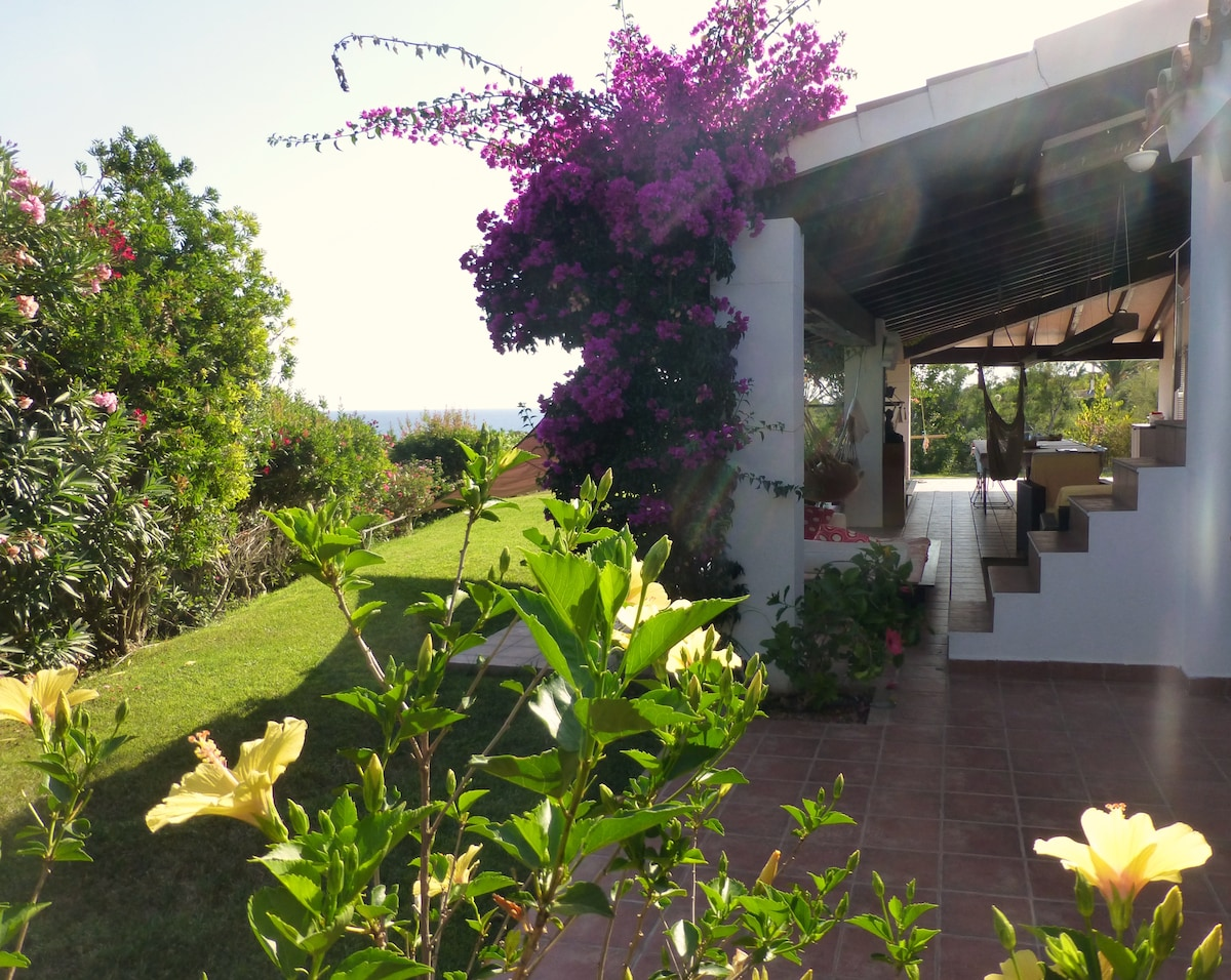 Front terrace and porsche, pink buganbilia