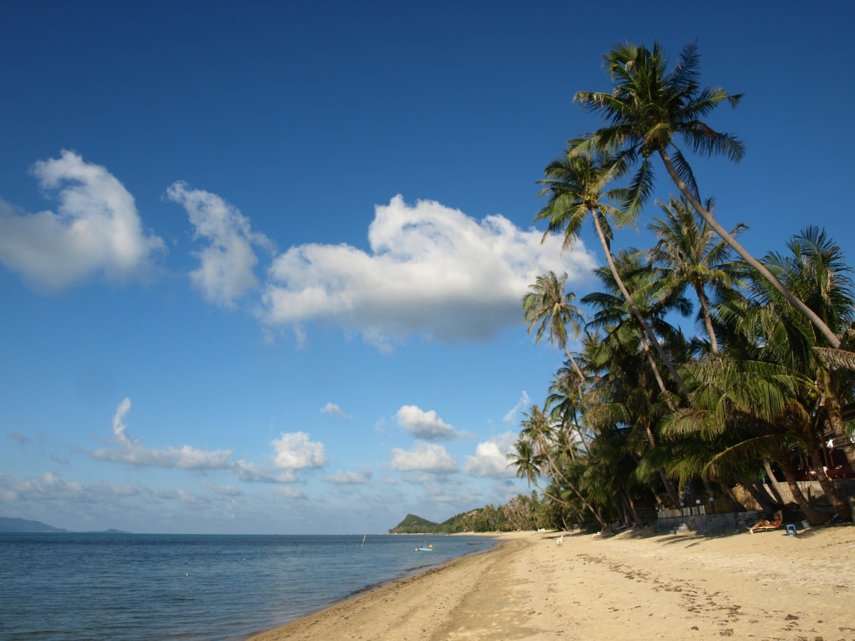 The serene, peaceful, sandy beachfront just 15 seconds walk from the house...