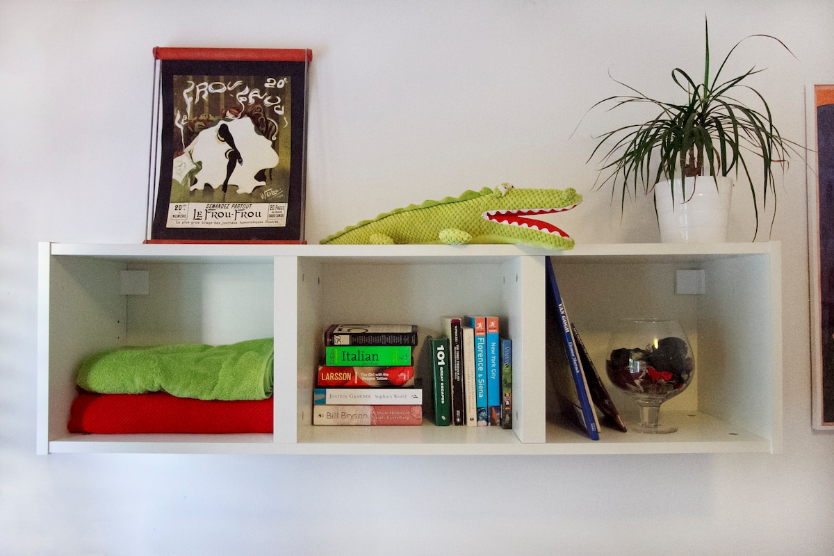 Bookshelf in guest room
