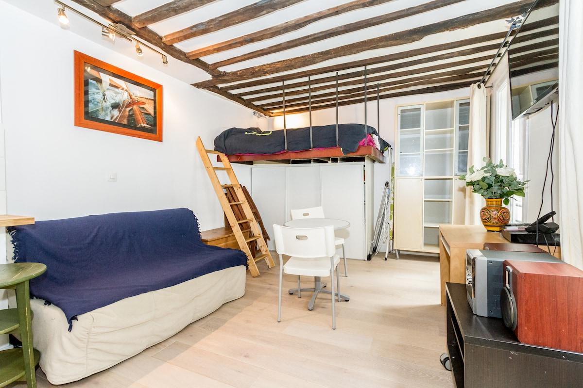 Cosy  apartment  located in paris 3