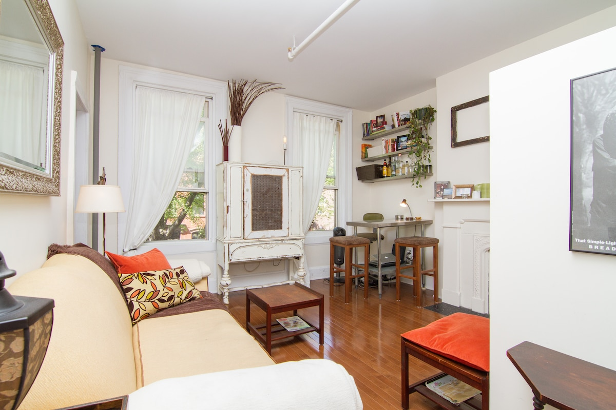 1 bed apt in heart of Ft Greene