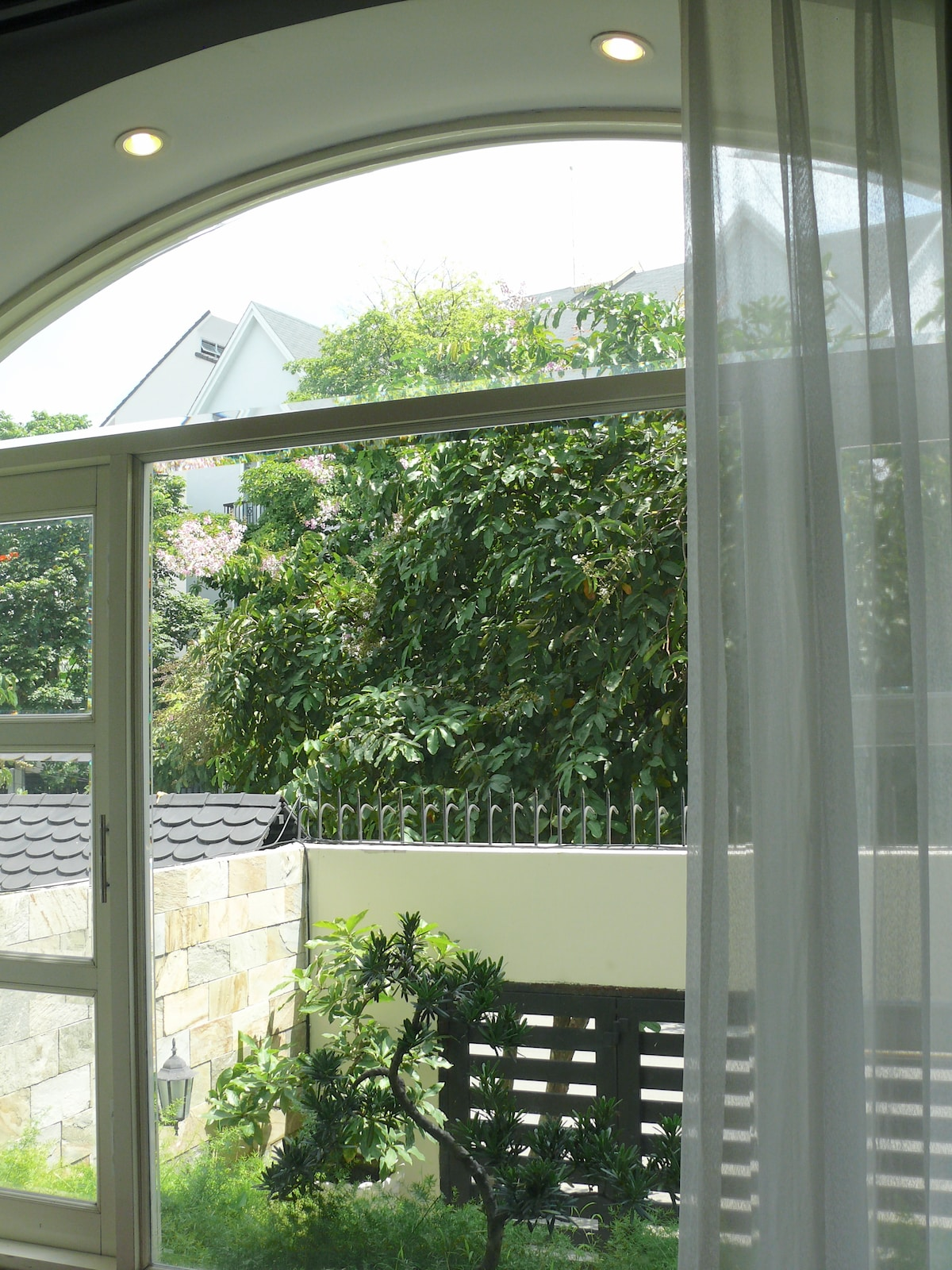 The window during the day time is fill with green and bird chirping