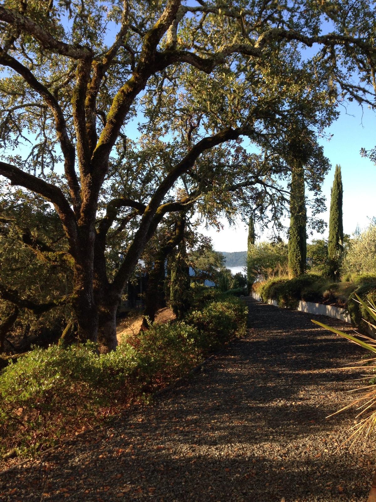 Hilltop Oasis–Oak Knoll Bungalow