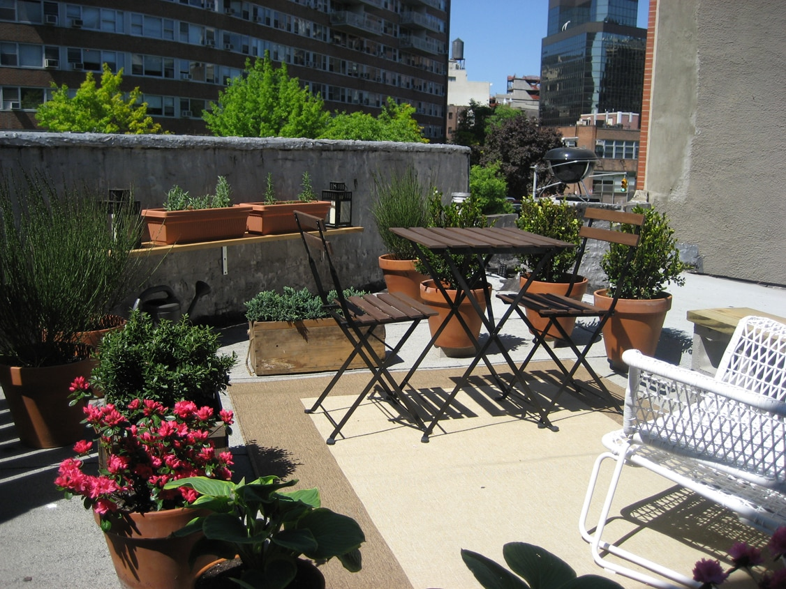 Downtown, lg 1 bed w/ private roof