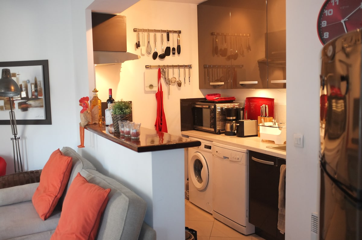 Modern apartment in central Antibes