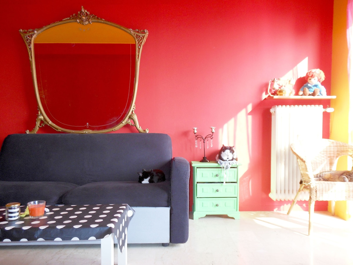 lovely:::cats room