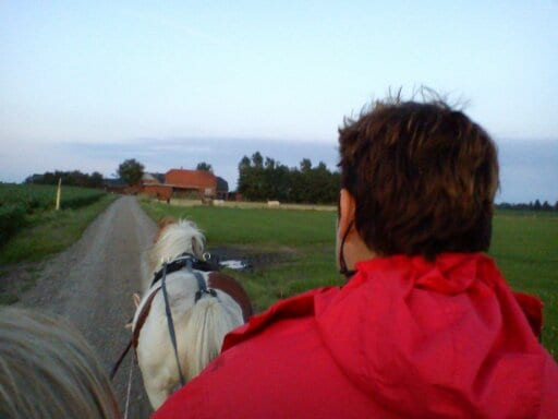 Experience Holiday at our Farm
