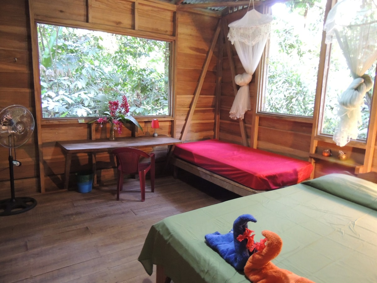 Simplicity at it's best! Your charming jungle cabin