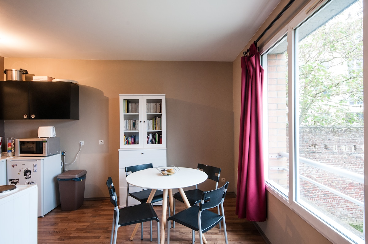 Charming studio flat in Lille