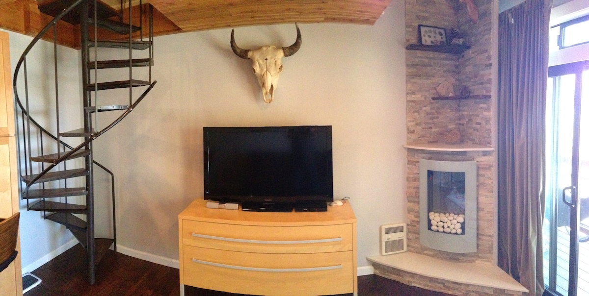 "Living area includes 50"" flat screen, DVD, Bluetooth speaker tube, modern fireplace, bison skull"