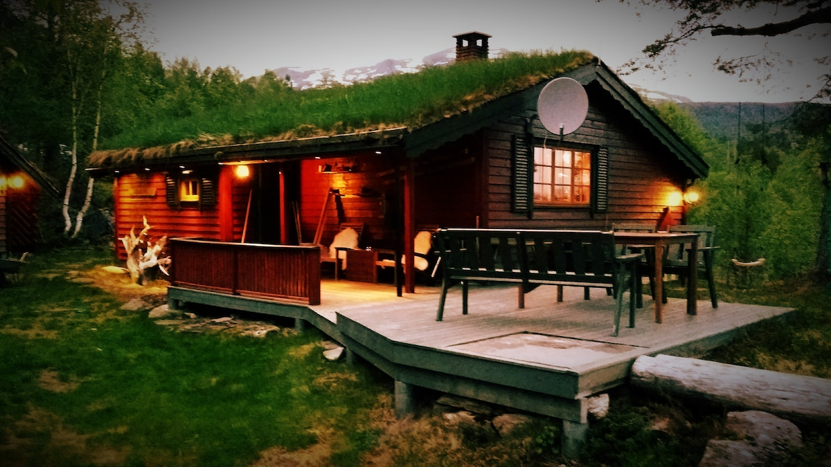 Cosy cabin in the Heart of Sunnmøre