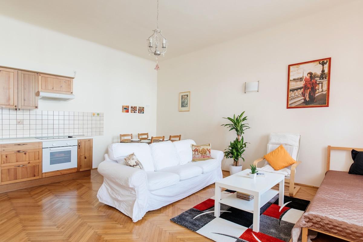 Elegant flat in the very center