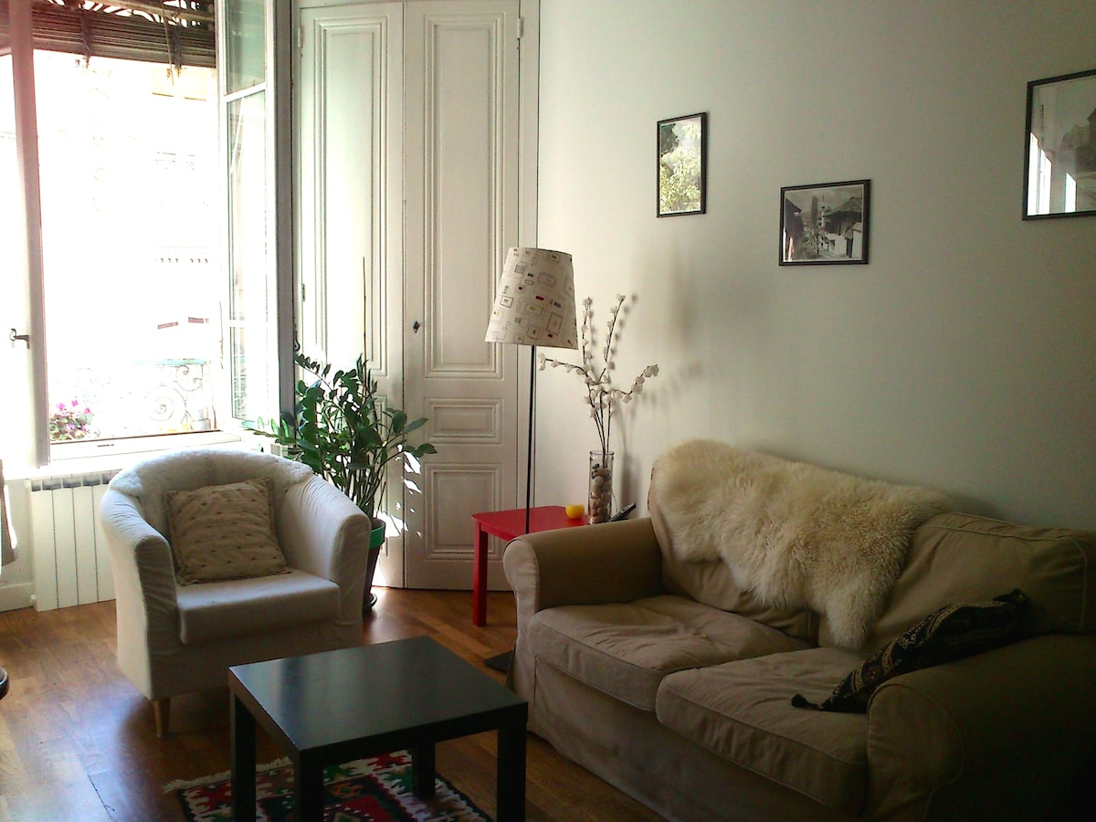 Sweet flat in the heart of Lyon!