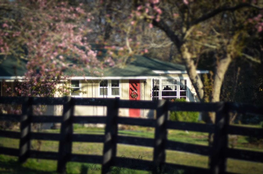 The Cottage at Stillwaters Farm
