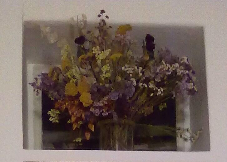 flowers upon the kitchen door