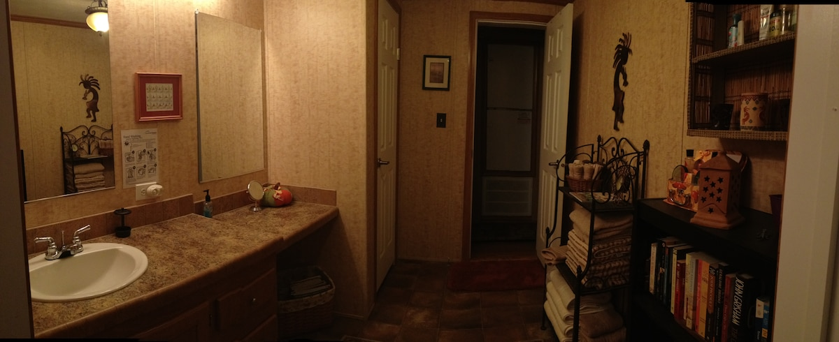 Guest Bathroom with all the necessities and a lending library.