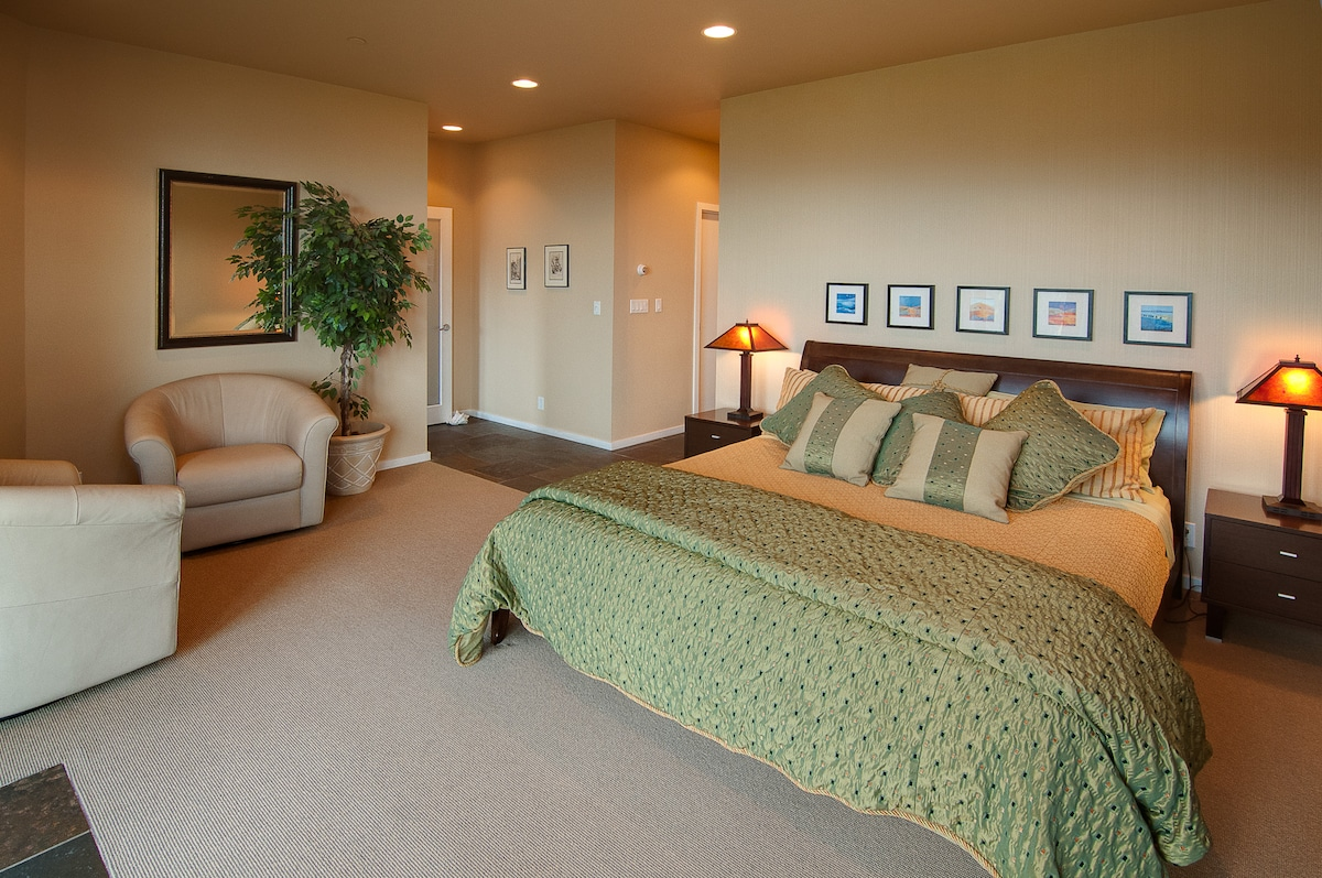 The Master Bedoom with King-size bed, TV and Fireplace