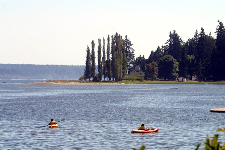 Kayak rentals are available just down the beach.  We have a canoe for your use.