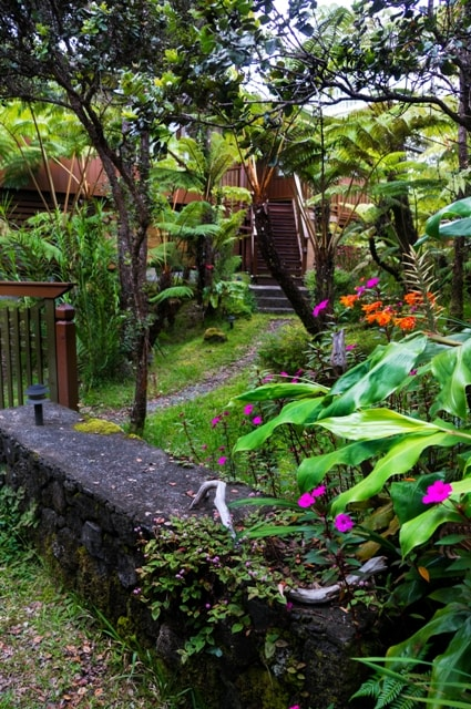 Secluded Cottage in Volcano Hawaii