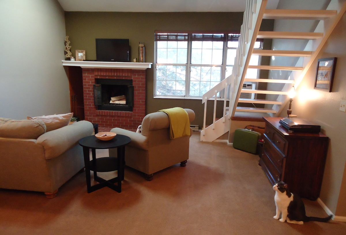 Private Suite in Mid-Town FoCo
