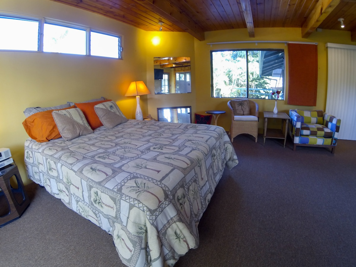 The Master Suite (BR#1) - Gigantic en suite Bathroom, King Bed (New 2015), Pool View,32' flatscreen TV with DVD player.