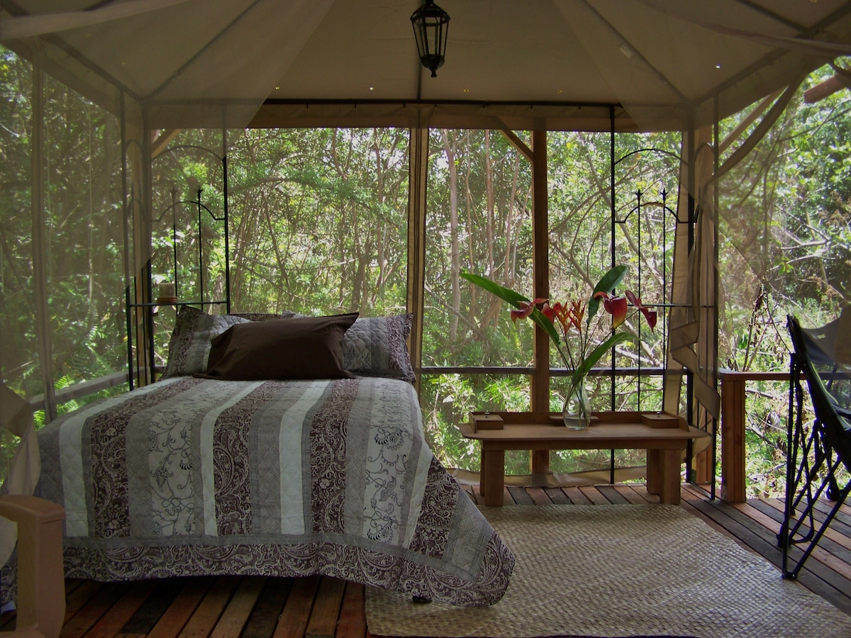 The Peaceful Dragonfly Cabin