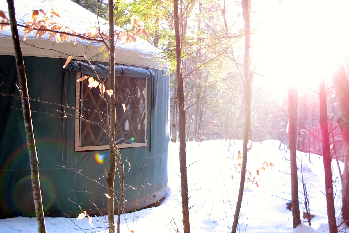 Find your light during your stay in Mt. Brook Yurt