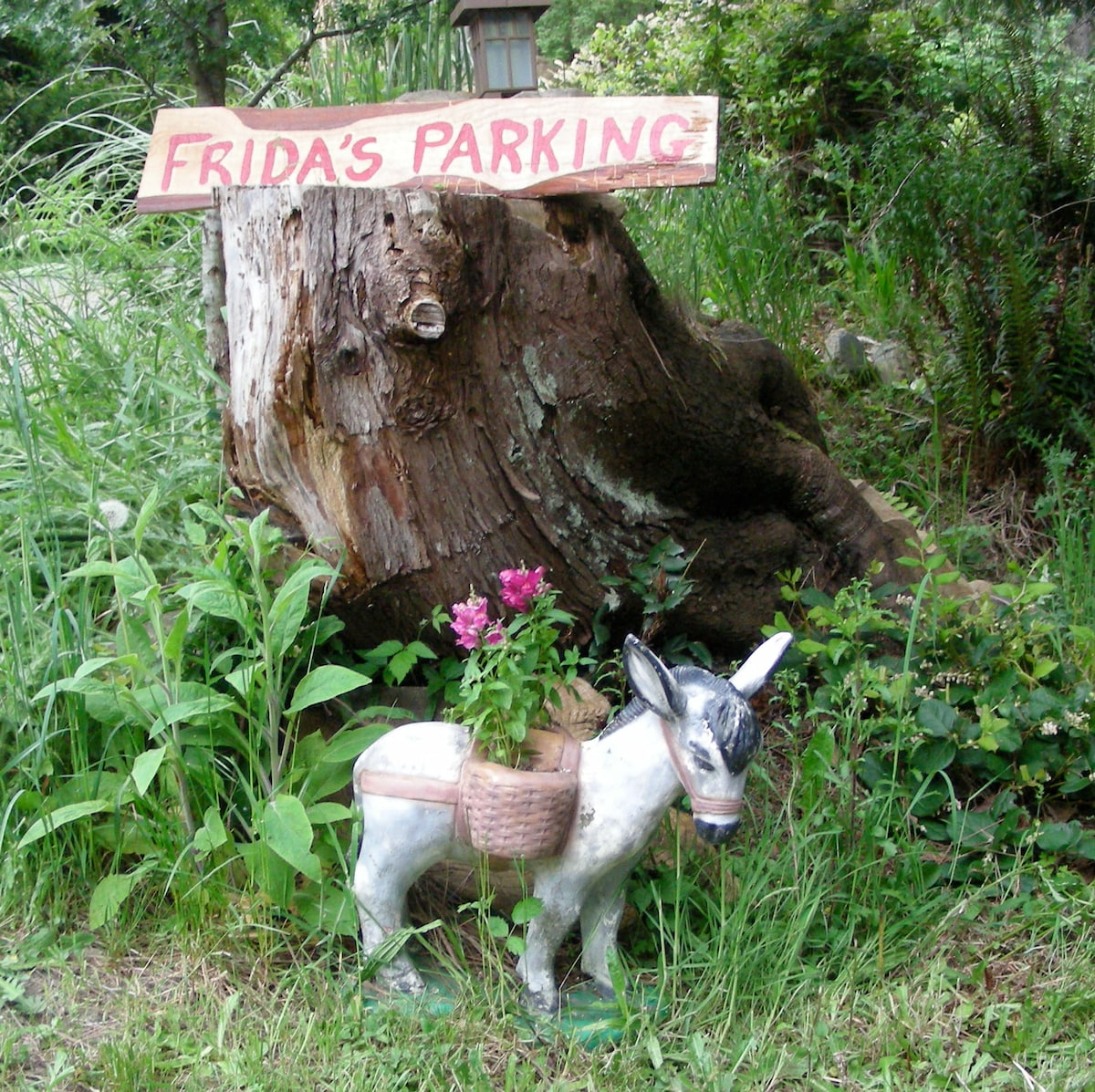 Hitch up your donkey at Fridas parking