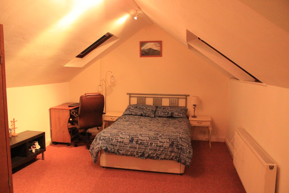 Spacious Double Room in family home