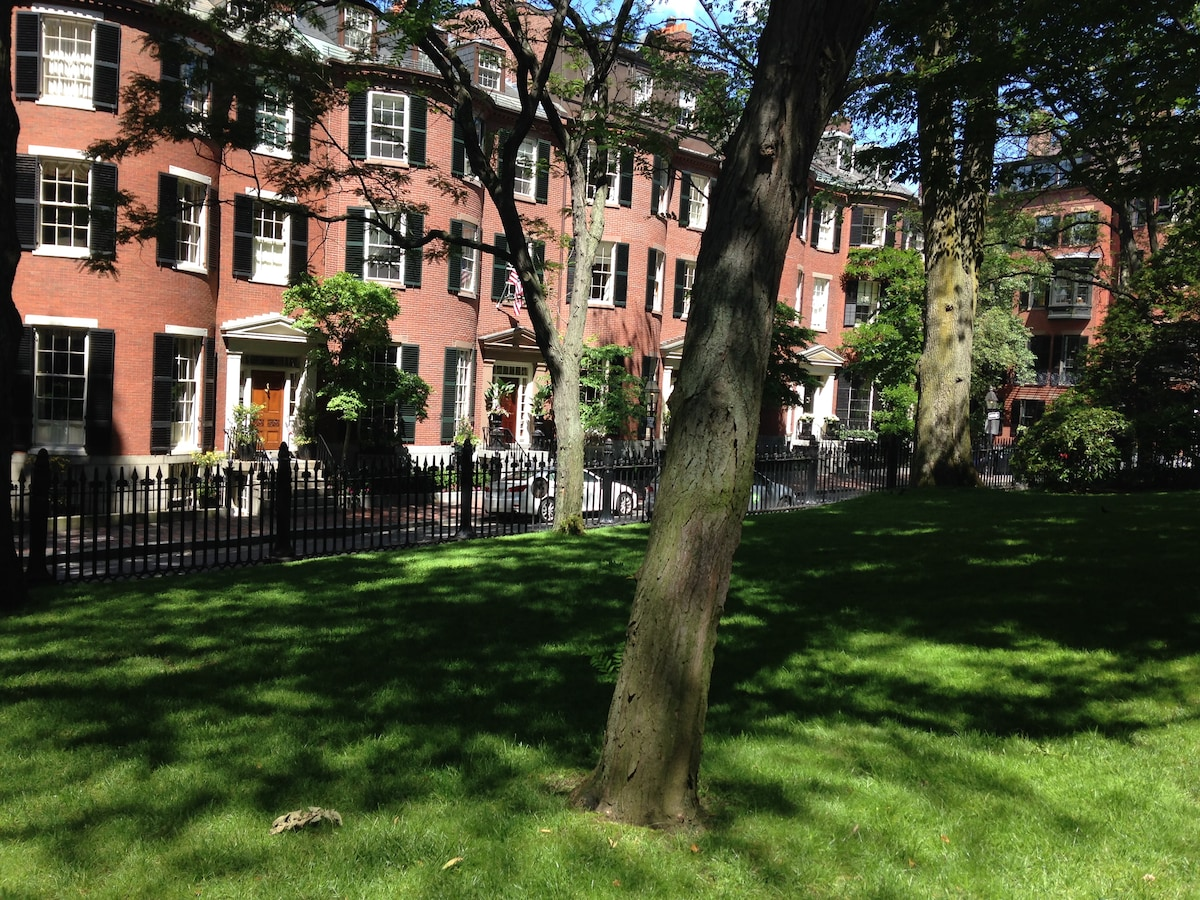 Comfortable 1 BR in Beacon Hill