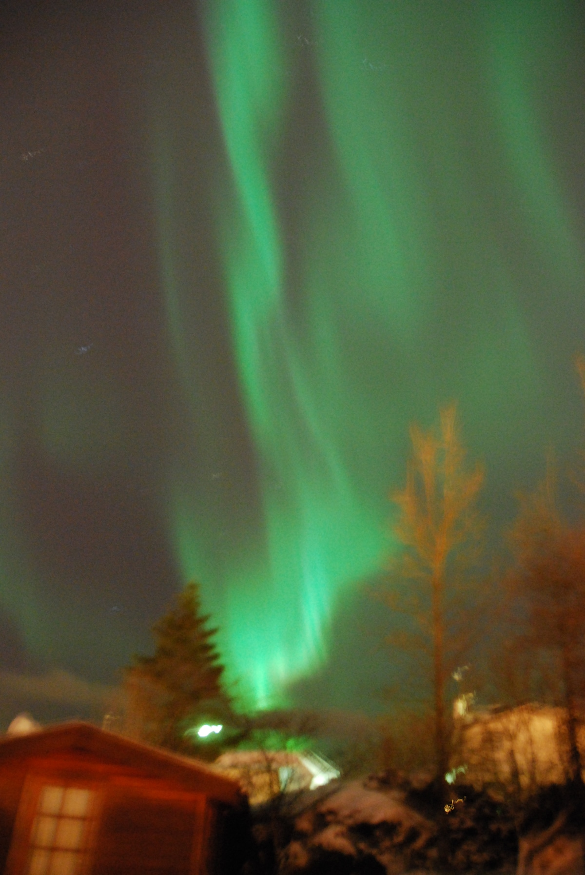 This picture of the northern lights is taken from our garden.