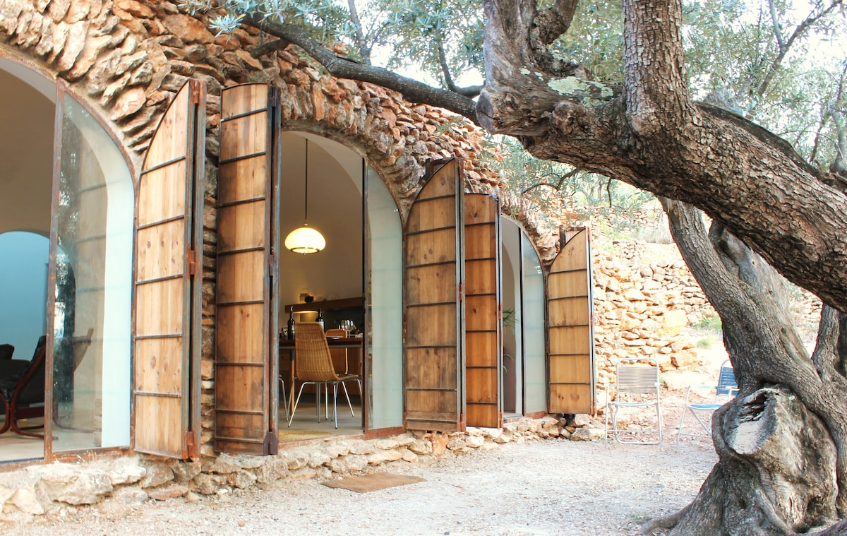 3 Arched entry ways let the afternoon sun stream in through the olive leaves.