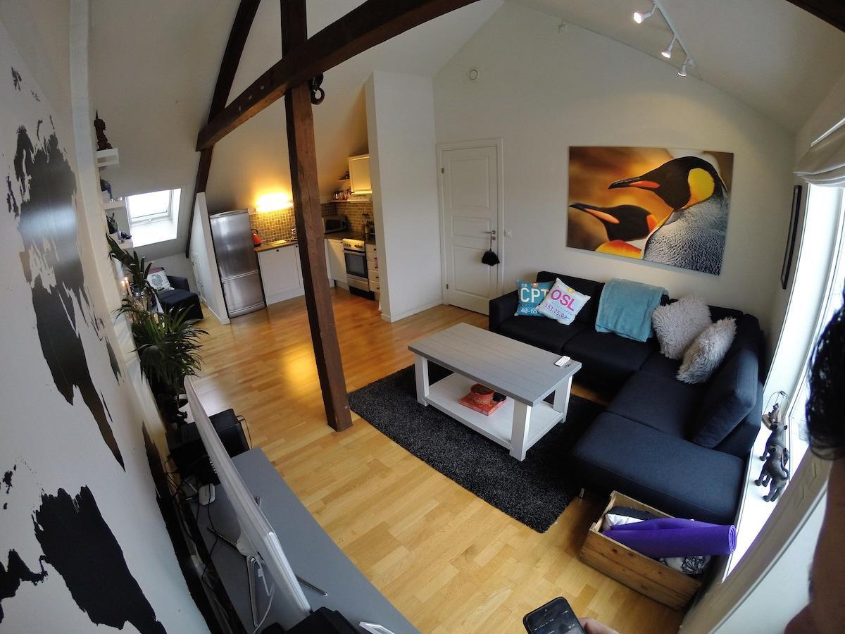 Cozy loft apartment, Grünerløkka