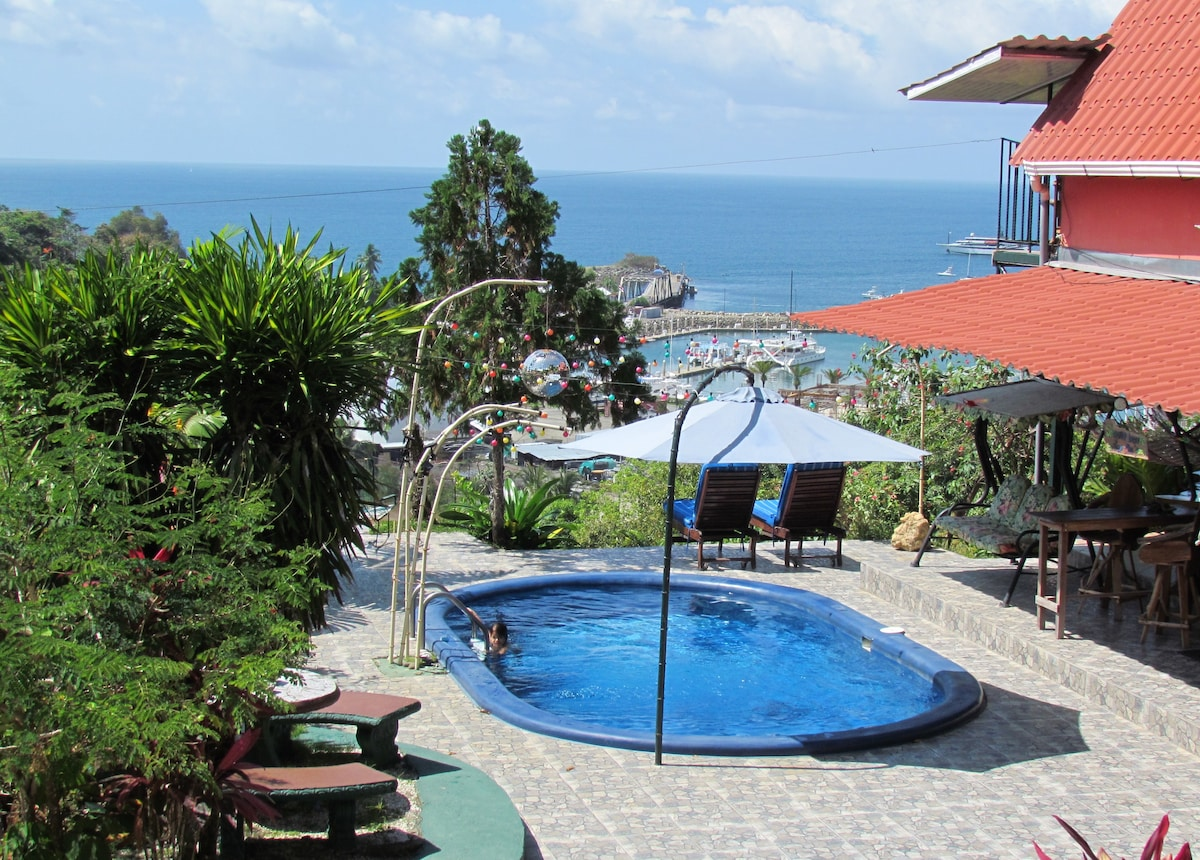 """La Casita""  Pool and Ocean Views"