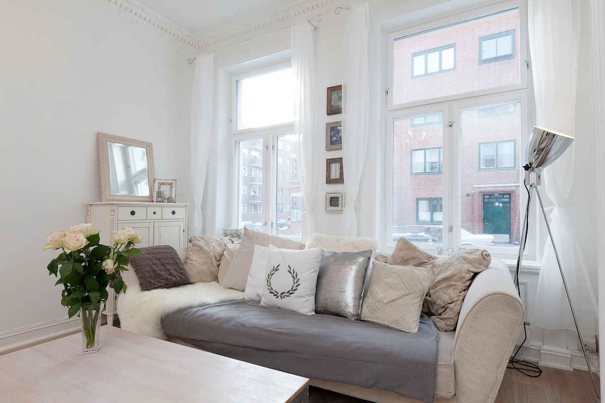The perfect apartment in the center