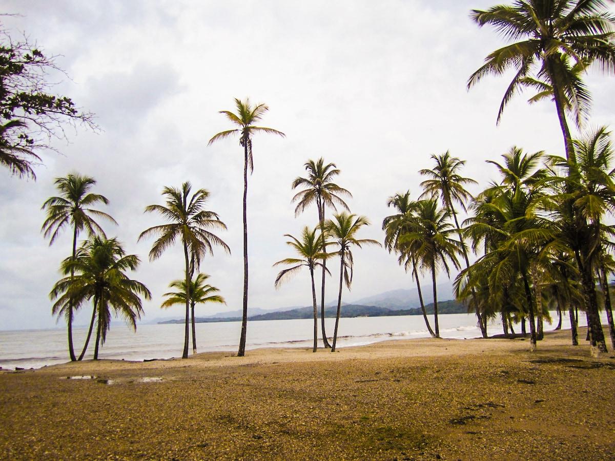 Caribbean Panama - Oceanfront Condo
